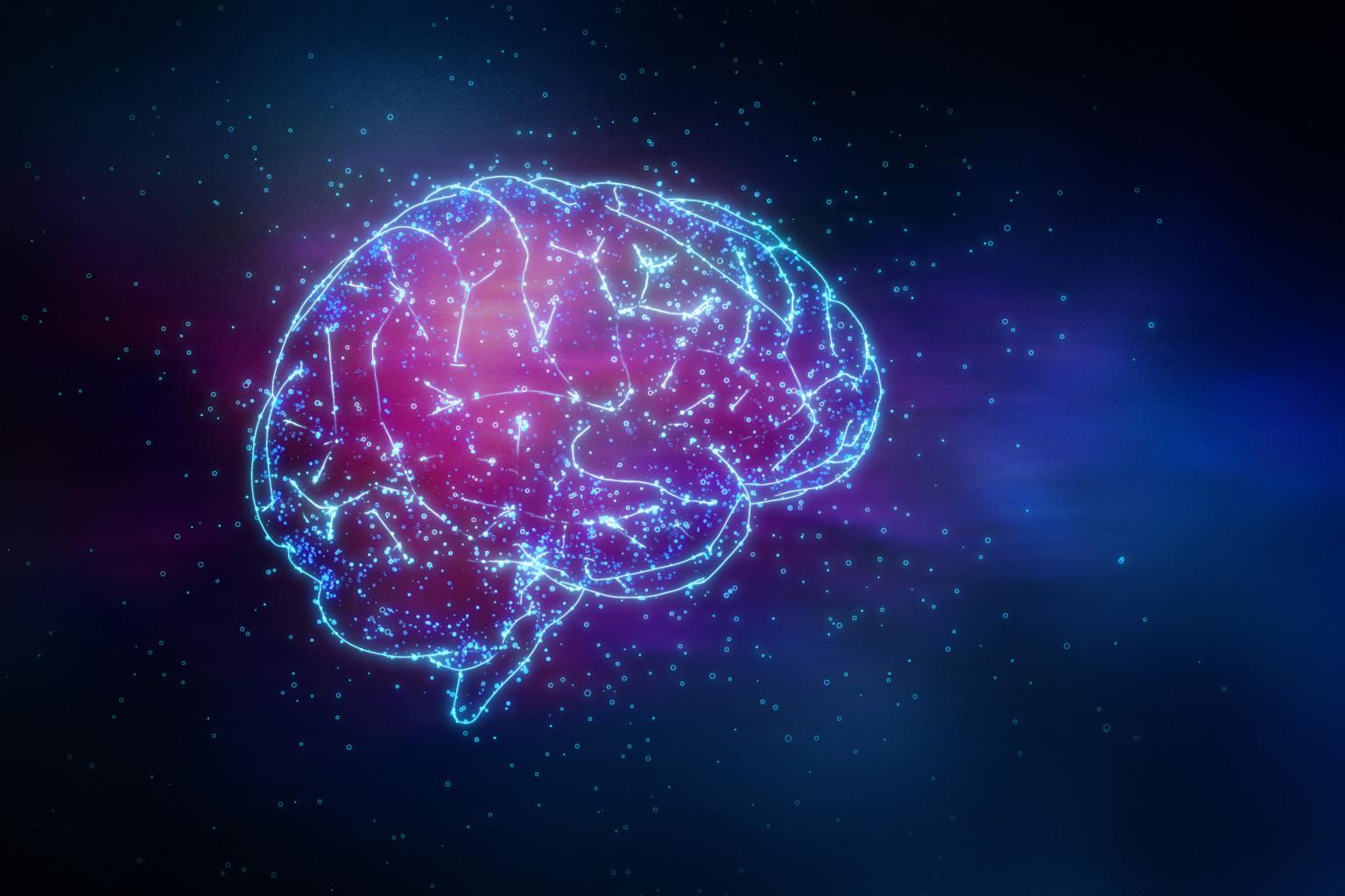 UPE, Il sistema nervoso centrale continua a modificarsi per tutta la vita